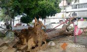 Una persona lesionada y vehículos dañados por las lluvias en Guerrero