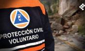 Fuertes vientos provocan caída de árboles y una palmera en Acapulco