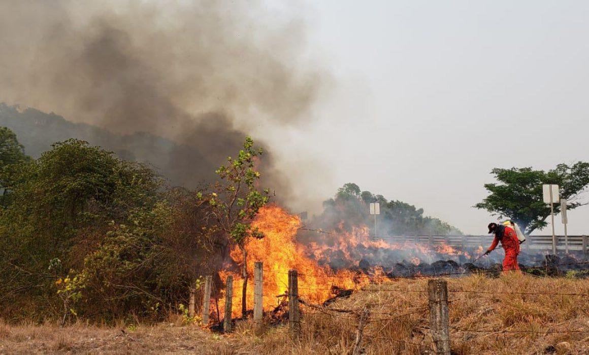 Suma Guerrero 18 mil hectáreas afectadas por incendios forestales
